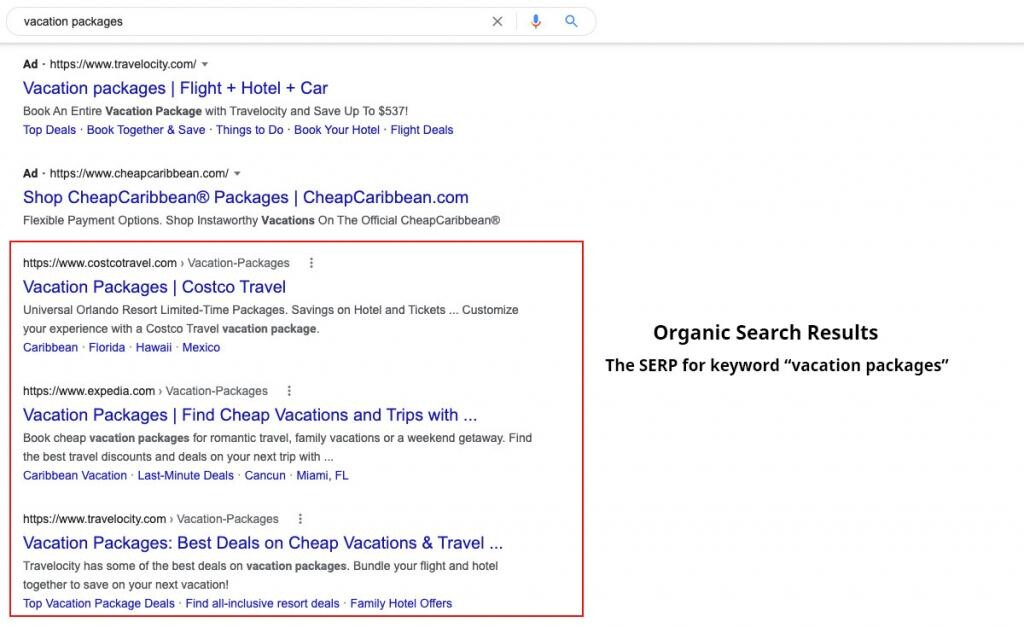 Example of Organic Search Results on Google for the term Vacation Packages